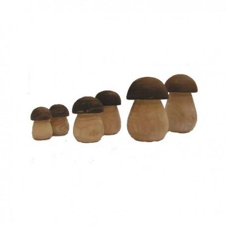 Cèpes en bois